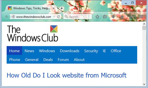 Tema Little Flowers Untuk Mozilla Firefox