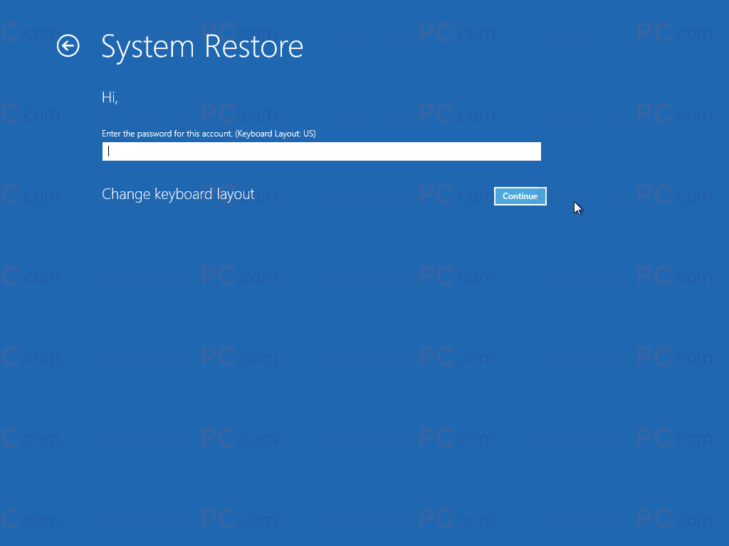 Password System Restore