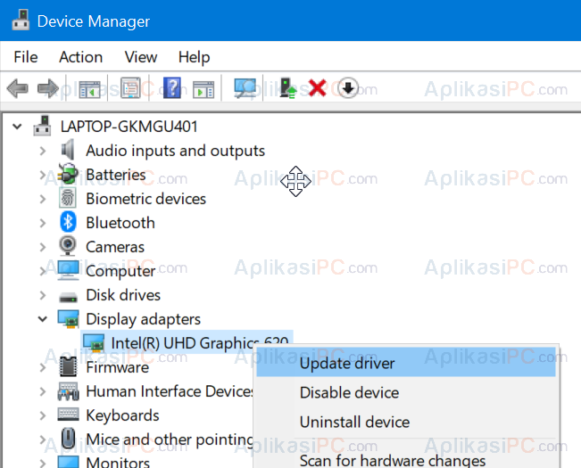 Device Manager - Display Adapters - Update driver